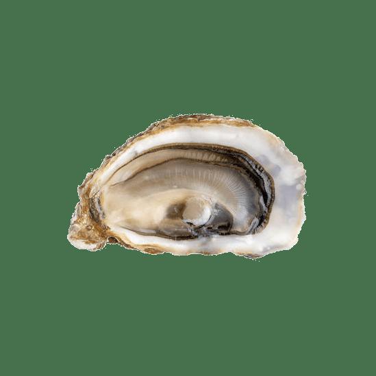 Livraison d'huîtres fine de claire bio daniel sorlut